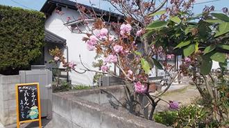 花木がたくさんの施設です